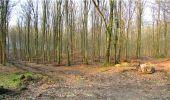 Trail Walk LONGPONT - en forêt de Retz_13_Longpont_carrefour de la Croix de Guise_AR - Photo 22