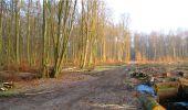 Trail Walk LONGPONT - en forêt de Retz_13_Longpont_carrefour de la Croix de Guise_AR - Photo 9