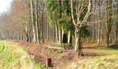 Trail Walk LONGPONT - en forêt de Retz_13_Longpont_carrefour de la Croix de Guise_AR - Photo 47