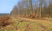 Trail Walk LONGPONT - en forêt de Retz_13_Longpont_carrefour de la Croix de Guise_AR - Photo 70