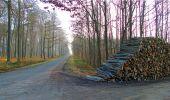 Trail Walk LONGPONT - en forêt de Retz_13_Longpont_carrefour de la Croix de Guise_AR - Photo 28