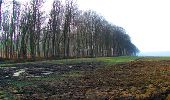Trail Walk LONGPONT - en forêt de Retz_13_Longpont_carrefour de la Croix de Guise_AR - Photo 53