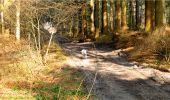 Trail Walk LONGPONT - en forêt de Retz_13_Longpont_carrefour de la Croix de Guise_AR - Photo 68