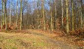 Trail Walk LONGPONT - en forêt de Retz_13_Longpont_carrefour de la Croix de Guise_AR - Photo 71