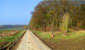 Trail Walk LONGPONT - en forêt de Retz_13_Longpont_carrefour de la Croix de Guise_AR - Photo 56