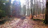 Trail Walk LONGPONT - en forêt de Retz_13_Longpont_carrefour de la Croix de Guise_AR - Photo 90