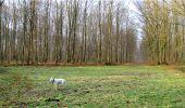 Trail Walk LONGPONT - en forêt de Retz_13_Longpont_carrefour de la Croix de Guise_AR - Photo 37