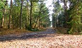 Trail Walk LONGPONT - en forêt de Retz_13_Longpont_carrefour de la Croix de Guise_AR - Photo 69