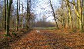 Trail Walk LONGPONT - en forêt de Retz_13_Longpont_carrefour de la Croix de Guise_AR - Photo 43