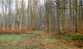 Trail Walk LONGPONT - en forêt de Retz_13_Longpont_carrefour de la Croix de Guise_AR - Photo 18