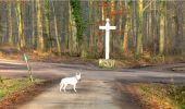 Trail Walk LONGPONT - en forêt de Retz_13_Longpont_carrefour de la Croix de Guise_AR - Photo 20