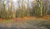 Trail Walk LONGPONT - en forêt de Retz_13_Longpont_carrefour de la Croix de Guise_AR - Photo 33