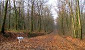 Trail Walk LONGPONT - en forêt de Retz_13_Longpont_carrefour de la Croix de Guise_AR - Photo 84