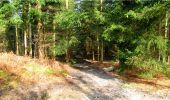 Trail Walk LONGPONT - en forêt de Retz_13_Longpont_carrefour de la Croix de Guise_AR - Photo 65