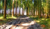 Trail Walk LONGPONT - en forêt de Retz_13_Longpont_carrefour de la Croix de Guise_AR - Photo 72