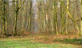 Trail Walk LONGPONT - en forêt de Retz_13_Longpont_carrefour de la Croix de Guise_AR - Photo 35