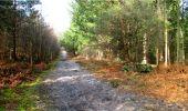 Trail Walk LONGPONT - en forêt de Retz_13_Longpont_carrefour de la Croix de Guise_AR - Photo 64