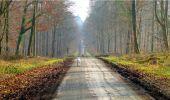 Trail Walk LONGPONT - en forêt de Retz_13_Longpont_carrefour de la Croix de Guise_AR - Photo 59