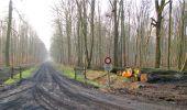 Trail Walk LONGPONT - en forêt de Retz_13_Longpont_carrefour de la Croix de Guise_AR - Photo 11