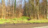 Trail Walk LONGPONT - en forêt de Retz_13_Longpont_carrefour de la Croix de Guise_AR - Photo 48