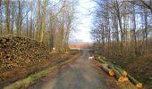 Trail Walk LONGPONT - en forêt de Retz_13_Longpont_carrefour de la Croix de Guise_AR - Photo 31