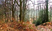 Trail Walk LONGPONT - en forêt de Retz_13_Longpont_carrefour de la Croix de Guise_AR - Photo 86