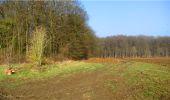 Trail Walk LONGPONT - en forêt de Retz_13_Longpont_carrefour de la Croix de Guise_AR - Photo 57