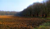 Trail Walk LONGPONT - en forêt de Retz_13_Longpont_carrefour de la Croix de Guise_AR - Photo 54