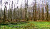 Trail Walk LONGPONT - en forêt de Retz_13_Longpont_carrefour de la Croix de Guise_AR - Photo 36