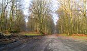 Trail Walk LONGPONT - en forêt de Retz_13_Longpont_carrefour de la Croix de Guise_AR - Photo 34