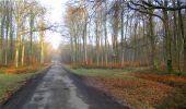 Trail Walk LONGPONT - en forêt de Retz_13_Longpont_carrefour de la Croix de Guise_AR - Photo 15