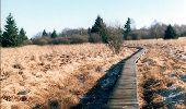 Randonnée Marche Eupen - RB-Lg-05 - Autour du lac d'Eupen - Photo 1