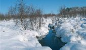 Randonnée Marche Eupen - RB-Lg-05 - Autour du lac d'Eupen - Photo 2