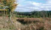 Randonnée Marche Sainte-Ode - RB-Lu-08 - De part et d'autre de l'Ourthe occidentale - Photo 1