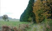 Randonnée Marche Sainte-Ode - RB-Lu-08 - De part et d'autre de l'Ourthe occidentale - Photo 3