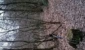Trail Walk GREDISANS - Gredisans - Golard - Crx Boyon - Photo 3