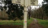 Trail Walk PONTCARRE - les lions de Ferrières - Photo 6