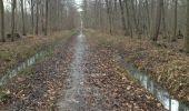 Trail Walk PONTCARRE - les lions de Ferrières - Photo 4
