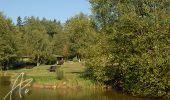 Randonnée Marche Spa - Petite boucle  en fagne de Malchamps-Berinzenne - Photo 4