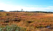 Randonnée Marche Spa - Berinzenne. Natura 2000, des sites qui valent le détour. Lg 14. - Photo 5