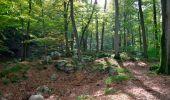 Randonnée Marche Spa - Berinzenne. Natura 2000, des sites qui valent le détour. Lg 14. - Photo 9