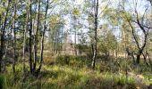 Randonnée Marche Spa - Berinzenne. Natura 2000, des sites qui valent le détour. Lg 14. - Photo 7