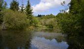 Randonnée Marche Sainte-Ode - Amberloup, Natura 2000 - Des sites qui valent le détour. Lx11 - Photo 5