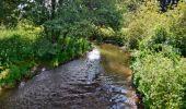Randonnée Marche Sainte-Ode - Amberloup, Natura 2000 - Des sites qui valent le détour. Lx11 - Photo 6
