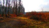 Randonnée Marche LONGPONT - en forêt de Retz_16_Longpont_carrefour du Chapeau des Cordeliers_AR - Photo 42