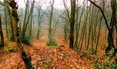 Randonnée Marche LONGPONT - en forêt de Retz_16_Longpont_carrefour du Chapeau des Cordeliers_AR - Photo 64