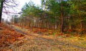 Randonnée Marche LONGPONT - en forêt de Retz_16_Longpont_carrefour du Chapeau des Cordeliers_AR - Photo 36