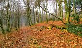 Randonnée Marche LONGPONT - en forêt de Retz_16_Longpont_carrefour du Chapeau des Cordeliers_AR - Photo 63