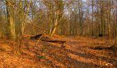 Randonnée Marche LONGPONT - en forêt de Retz_16_Longpont_carrefour du Chapeau des Cordeliers_AR - Photo 75