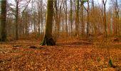 Randonnée Marche LONGPONT - en forêt de Retz_16_Longpont_carrefour du Chapeau des Cordeliers_AR - Photo 72